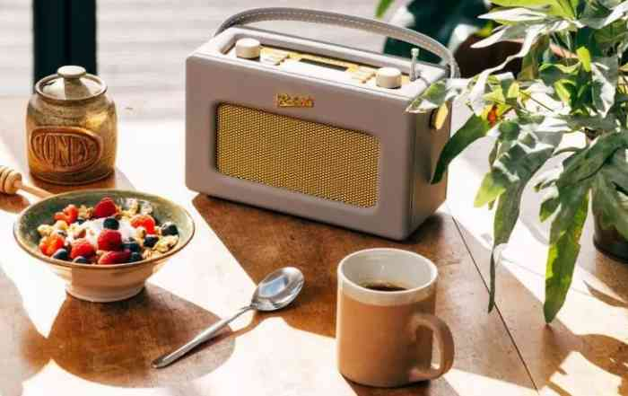 fête de la radio 2021 poste radio roberts